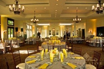 yellow-uplighting-daytime-whitehall-manor-virginia