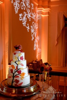 lighting at whitehall manor cake spotlight renal uplighting and texture lighting