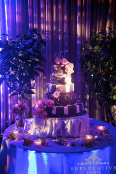 Fairytale Once Upon a Time Midsummer Nights Dream cake with texture lighting and cake spotlight.